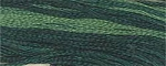 Spinach Classic Colorworks Cotton Floss 5yd skein #029
