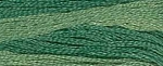 Chopped Chives Classic Colorworks Cotton Floss 5yd skein #217