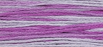 2291 Sugar Plum Weeks Dye Works Floss