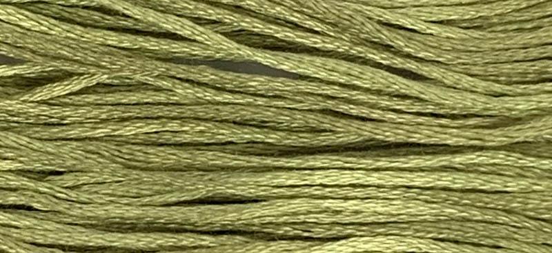 1194 Broom Tree Weeks Dye Works Floss
