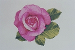 Camilla's Rose - (Cross Stitch)