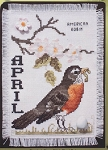 Birds of the Month - April America Robin