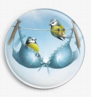 A Pair of Blue Tits Needle Nanny By David Finney Licensed Art Gecko Rouge Needle Minder